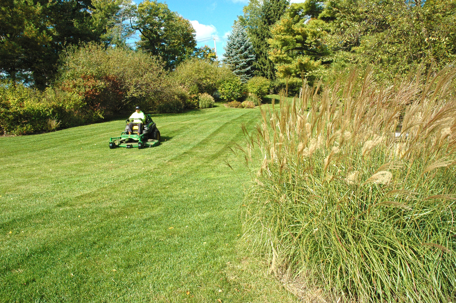 Commercial Landscape Careers in CT - Grass Turf